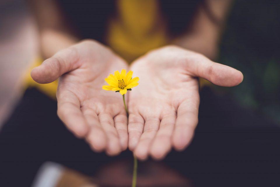finding-holistic-rehab-in-virginia